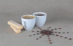 Le soleil de grains de café avec les biscuits de savoiardi et deux tasses de cofee Images libres de droits