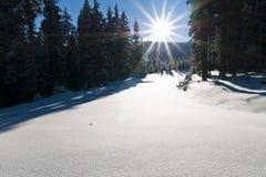 Le soleil de l'hiver Photo stock
