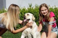 Le soleil de maison de parc d'été d'herbe d'animal familier de fille de mère de chien de Labrador riant l'été blond de nourrisson Image libre de droits
