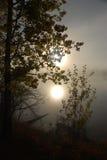 Le soleil de matin Images libres de droits