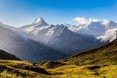 Le soleil de matin au-dessus des Alpes de Bernese Images libres de droits