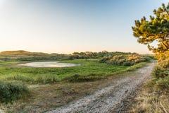 Le soleil de matin dans la vallée dunaire photo stock