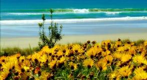 Le soleil de mer de nature photographie stock