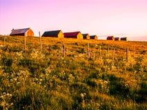 Le soleil de minuit étonnant en Norvège photographie stock