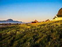 Le soleil de minuit étonnant en Norvège photos stock
