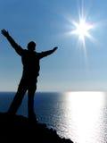 le soleil de mouche à Image libre de droits