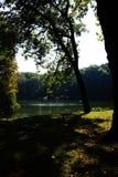 le soleil de réflexion de l'eau de lac d'automne Photographie stock libre de droits