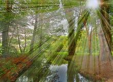 le soleil de scène de rayon Image stock