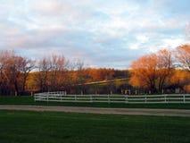 Le soleil en retard de jour se reflétant outre des arbres dans la basse cour paisible photographie stock libre de droits