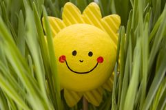 Le soleil heureux Photos libres de droits