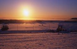 Le soleil inférieur de l'hiver Photo libre de droits