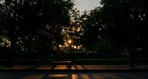 Le soleil inspiré d'aube a éclaté par des arbres image stock