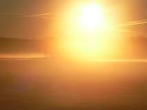 Le soleil lumineux de matin sur les champs Images libres de droits
