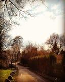 Le soleil nuageux Photos libres de droits