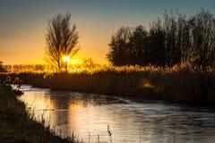 Le soleil place derrière un arbre au-dessus de la campagne néerlandaise près du Gouda L'eau congelée dans le canal reflète les co photos libres de droits