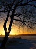 Le soleil saisi Photo stock