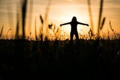 Le soleil se couche Images stock