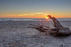 Le soleil swollowing de dragon Photographie stock