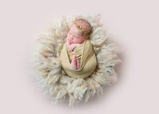 Le sommeil de nourrisson s'est enveloppé avec le jouet de lapin, topview photo stock
