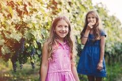 Le sorelle felici godono dello stile di vita del paese Fotografie Stock
