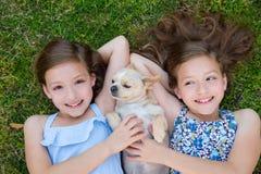 Le sorelle gemellate che giocano con la chihuahua inseguono la menzogne sul prato inglese Fotografie Stock