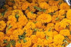 Le souci se dirige pour la vente utilisée pour Puja indou/cérémonies saintes Images stock