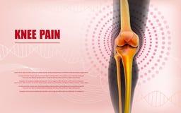 Le soulagement de la douleur de genou désosse du genou illustration stock