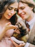 Le sourire a brouillé des couples de nouveaux mariés tenant et choyant le furet brun Photo libre de droits