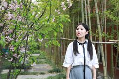 Le sourire chinois d'étudiante de lycée de l'Asie de belle beauté apprécient le jeu de temps gratuit dans le bambou de jardin de  photos stock