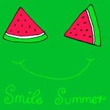 Le sourire découpé en tranches mignon de pastèque de tranches, clignant de l'oeil, a isolé le CCB vert Image libre de droits