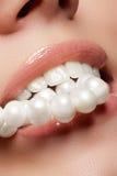 Le sourire femelle heureux en gros plan avec les dents blanches saines, les lèvres rouges lumineuses préparent Soin de cosmétolog image stock