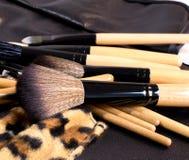 Le spazzole con un caso del leopardo per compongono Fotografie Stock Libere da Diritti