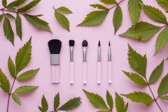 Le spazzole di trucco su un fondo di rosa pastello con la pianta va Concetto di bellezza Immagine Stock
