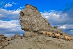 Le sphinx de Bucegi, Roumanie Photos libres de droits