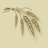 Le spighette di grano hanno legato un nastro su un fondo beige Fotografie Stock Libere da Diritti