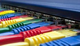 Le spine della rete hanno connesso ad un router o ad un interruttore Immagine Stock