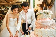 Le spose che tagliano una torta nunziale Immagini Stock
