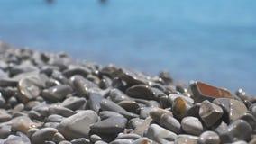 Le spume del mare stanno spruzzando la spiaggia del mare del ciottolo onde che passano le multi pietre e ciottoli lucidati colora archivi video