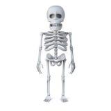 le squelette 3d se tient à l'aise illustration de vecteur