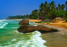 Le Sri Lanka Photo stock