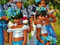 Le Sri Lanka 005 Image libre de droits
