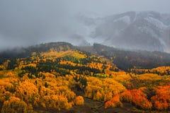 Le stagioni cambianti di Colorado Immagini Stock Libere da Diritti