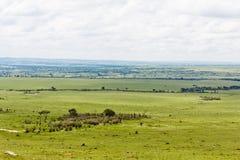 Le stationnement de Mara de masai Image libre de droits