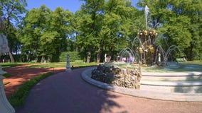 Le statue dell'oggetto d'antiquariato e della fontana e l'estate fanno il giardinaggio a St Petersburg, Russia archivi video