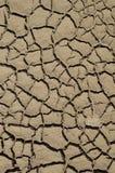 Le strutture a macroistruzione hanno asciugato i reticoli dell'argilla Immagine Stock Libera da Diritti