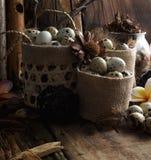 Le studio a tiré des oeufs de caille sur un fond en bois de vintage Photographie stock