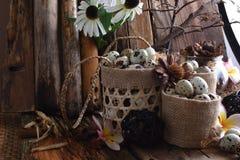 Le studio a tiré des oeufs de caille sur un fond en bois de vintage Photographie stock libre de droits