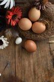 Le studio a tiré des oeufs de caille sur un fond en bois de vintage Photo libre de droits