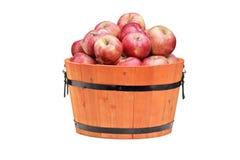 Le studio a tiré des pommes rouges dans un baril en bois Images stock