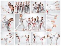 Le studio a tiré du groupe d'enfants formant des arts martiaux de karaté images stock
